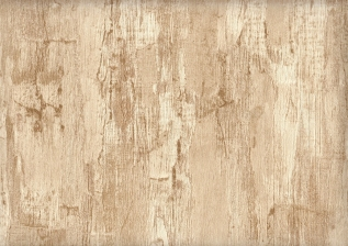 71383-12 Pine Home Color